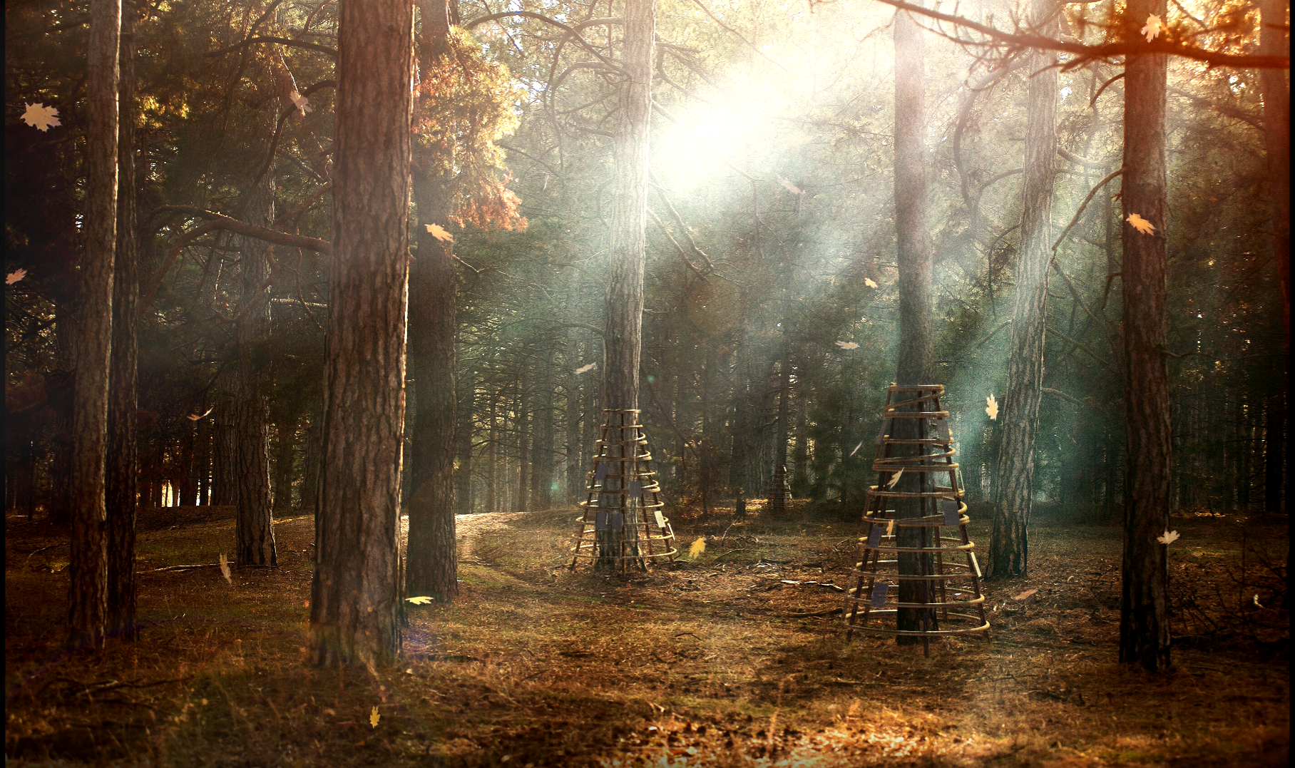Composite Render of memorial archives in forest.