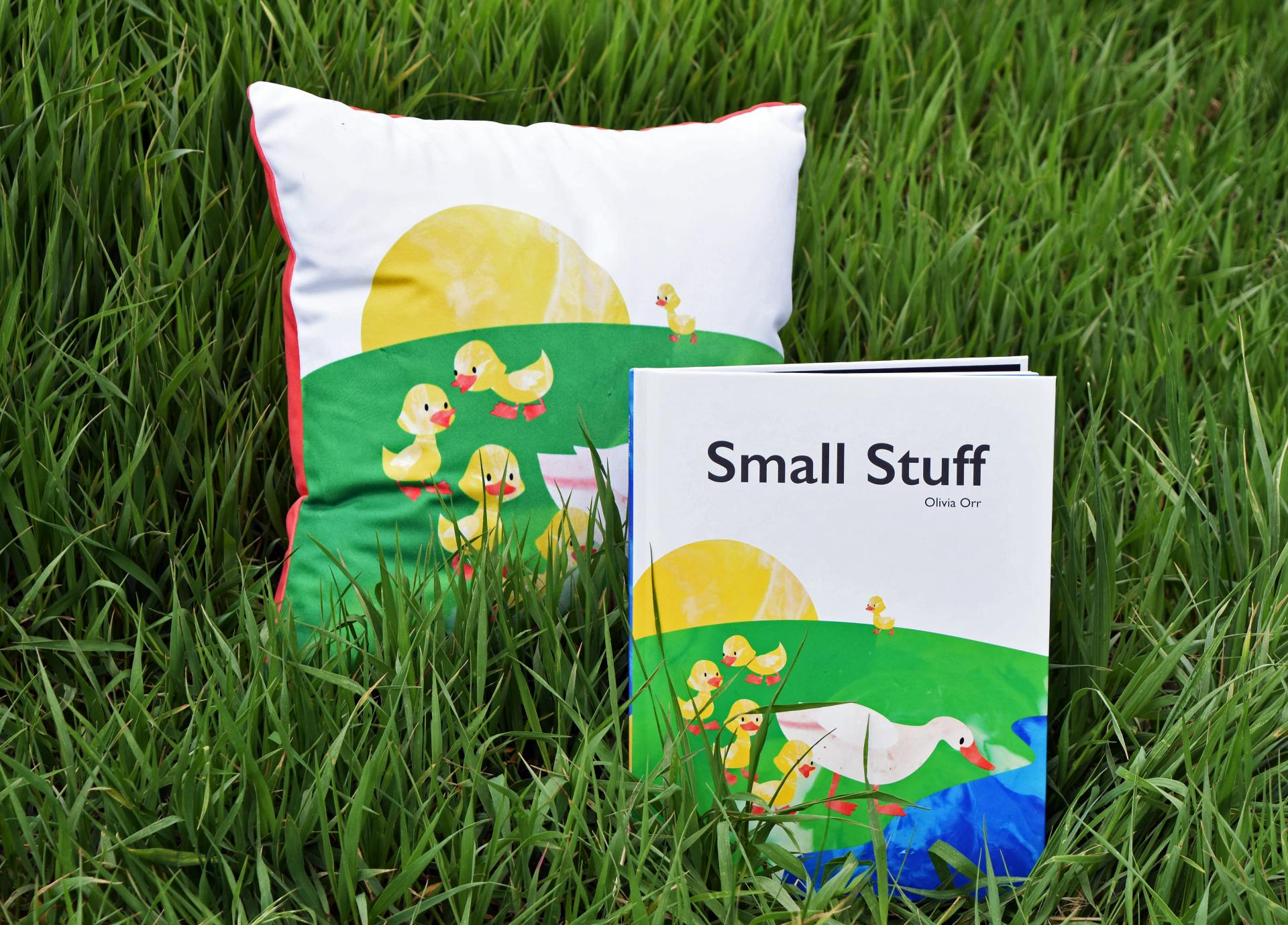 An illustrated pillow and book cover with the title 'Small Stuff' in a grassy field