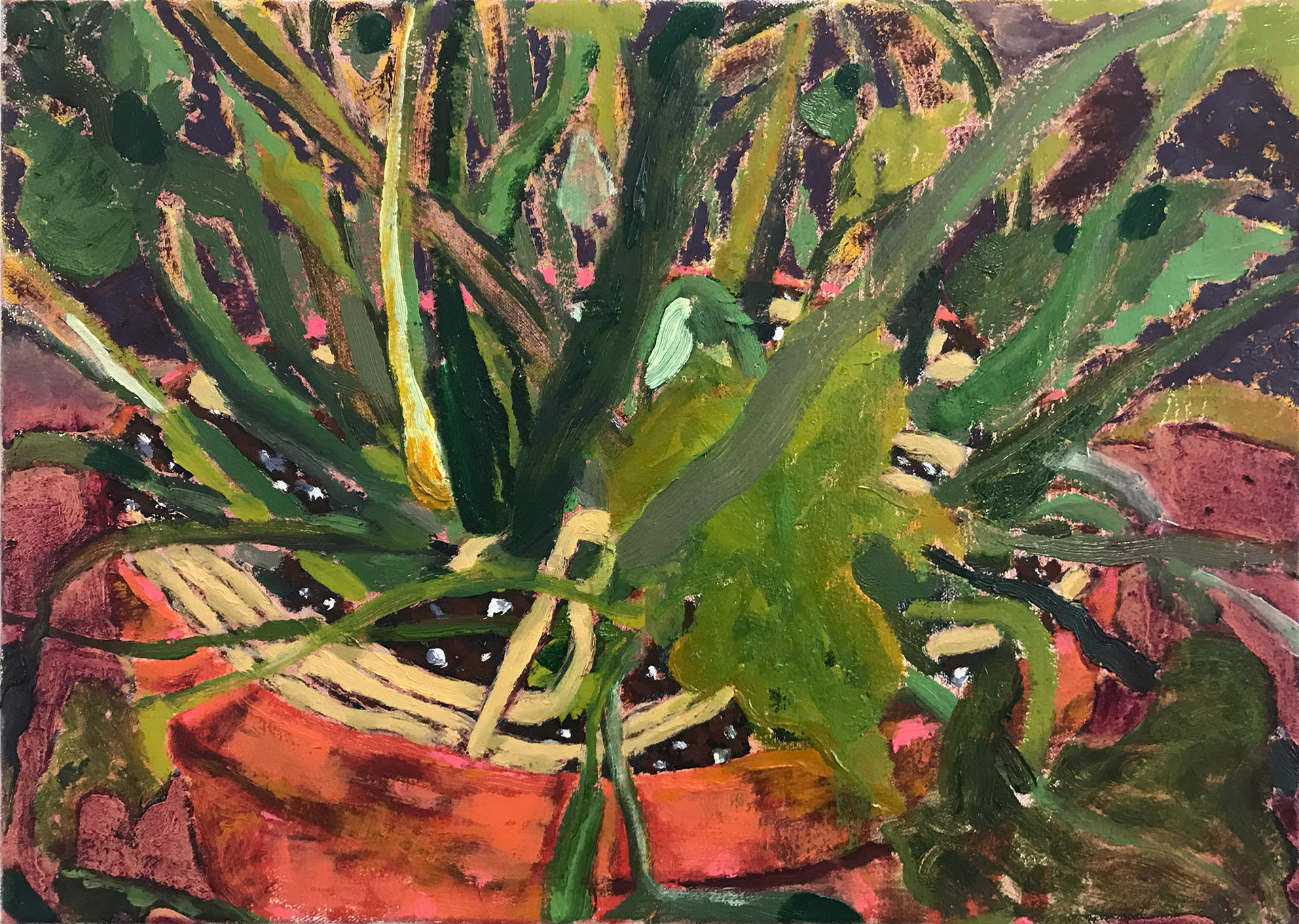 painting of the base of a houseplant